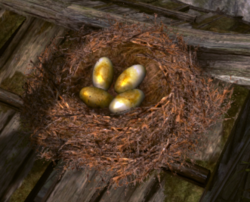 Tr9 egg poacher bird's nest.png